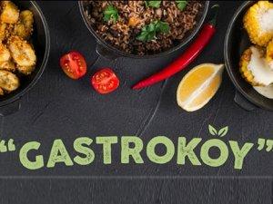 Türkiye Gastronomi Köyü, İstanbul da hayata geçiyor