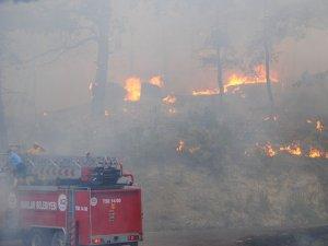 Manavgat'ın ciğerleri olan ormanlar yanıyor