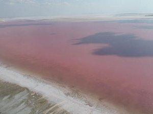 Tuz Gölü'nünrengi bakterilerden pembeye büründü
