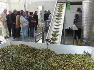 60 yıllık zeytinyağı fabrikası devlet desteği ile yenilendi
