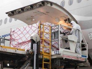 Sağlık ürünlerini Turkish Cargo Türkiye'ye ulaştırıyor
