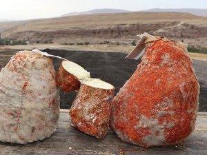Obruk peynirinin lezzet yolculuğu başladı