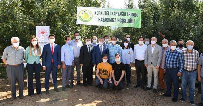 Avşar'ın logosu leylek seçildi