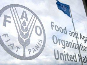 FAO ile gıda israfına karşı ortak komite kuruldu