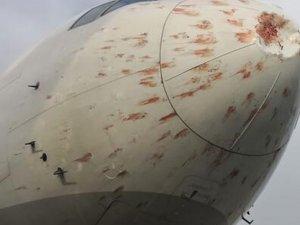 Atatürk Havalimanı'nda kuşların yarattığı korkulu anlar