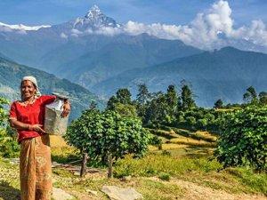 Turizm ihalesinde valiye beraat
