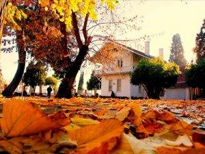 Kültür ve Turizm Bakanlığının 'prestij müzesi' olacak