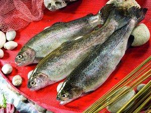 Su ürünleri ve hayvansal ürünlerde 604 milyon dolarlık ihracat
