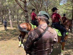 İstanbul'da valilik ormanlara girişi bir ay yasakladı