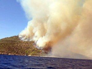 Alevler, Kissebükü'nde doğa ve tarihi yok ediyor