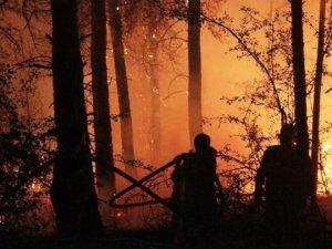 Bakanlıktan sivilerin yangına müdahalesine uyarı