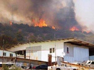 Yangınların faturası 300 Milyarı aşacak!
