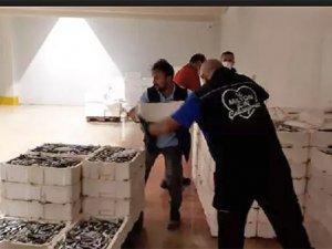 İstanbul'da boy yasağına uyulmayan 2 ton istavrite el konuldu!