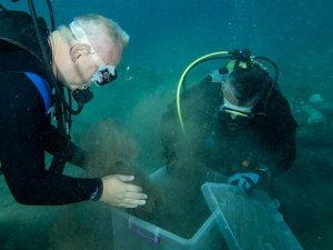 Kültür ve Turizm Bakanı Ersoy Datça'da gemi batığına daldı