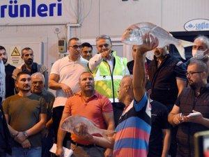 Antalya'da sezon ilk balık mezatı 500 liradan barbun balığıyla açıldı