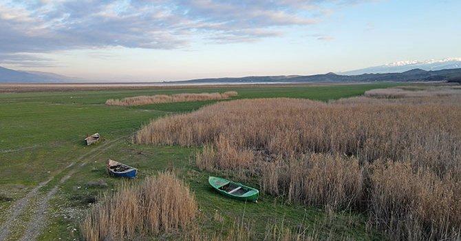 UEFA Başkanı, Saracoğlu'nda