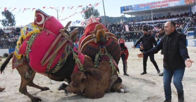 UEFA Kupası, İstanbul'a geldi