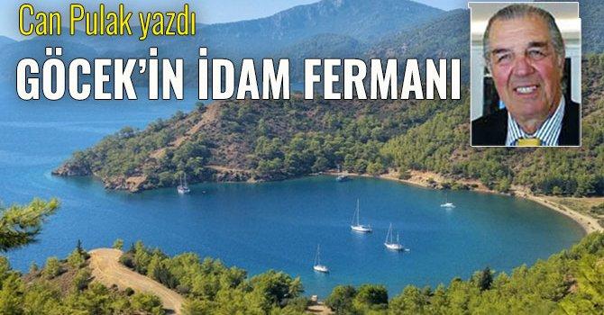 2 bin el yazması kitap dijitalde