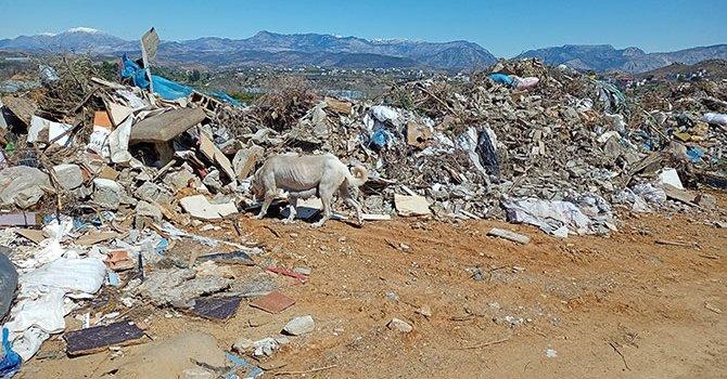 IRCICA Kütüphanesi açılıyor