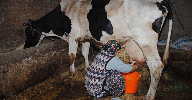 İlk yarış Rus Vitaly Petrov'un