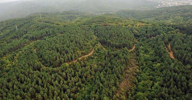 TMSF, yat ve otomobil satıyor