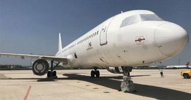 50 yılda 47 bin kelebek biriktirdi