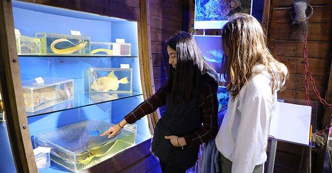 Hollandalı sağır-dilsiz çift evlendi
