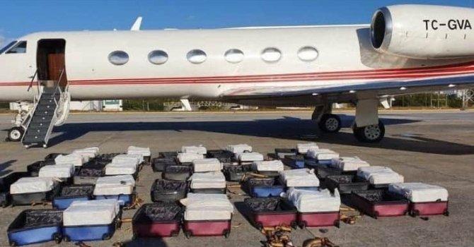 13 bin yıllık bitki keşfedildi