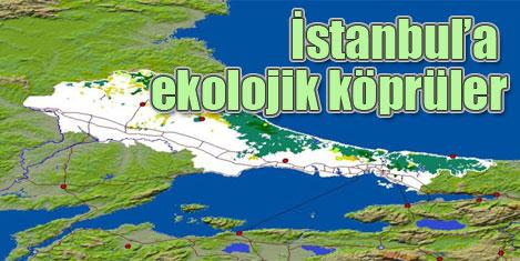 İstanbul'a 'Ekolojik Köprüler'