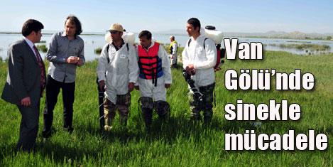 Van Gölü'nde sinekle mücadele