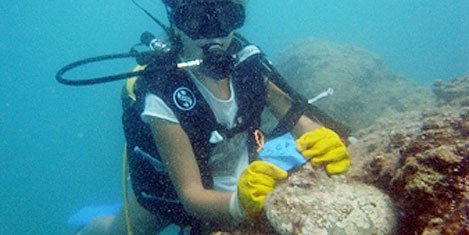 2500 yıllık dalgıç ağırlığı bulundu