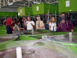 """Çivril'de """"Işıklı Gölünün Balıkçı Kadınları"""" projesi"""