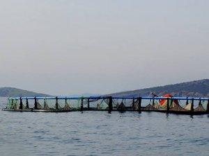 Ayvalık'ta balık çiftlikleri  kararına 2'nci iptal