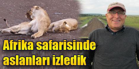 Afrika'yı safaride keşfettik-5