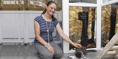 Kediler için lüks otel kuruldu