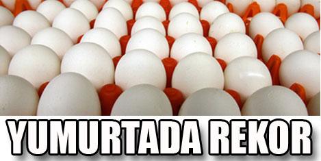Yumurta ihracatı rekora koşuyor