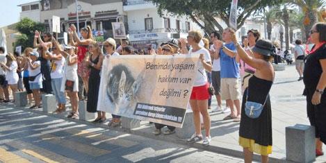 Hayvan hakları yasasına protesto