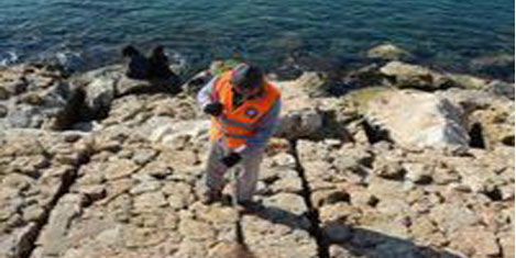 Yat Limanı'nda temizlik başladı