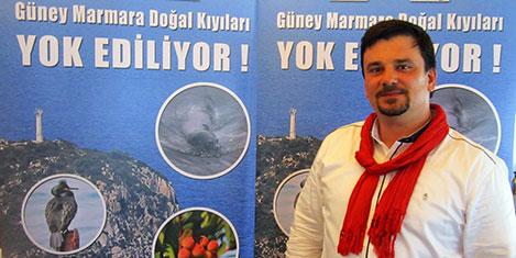 Marmara'daki foklar tehlikede