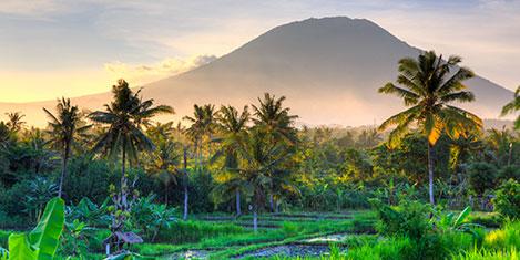 Emirates, Bali'ye günlük uçuyor