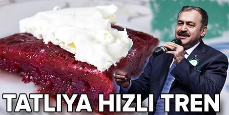 Eroğlu: Afyon'a hızlı tren gelecek