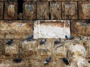Güvercinler, tarihi Hadrianus Kapısı'nı mesken tuttu