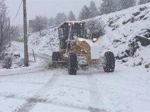 Turizm merkezi Kaş'ta karla mücadele  çalışması başlatıldı