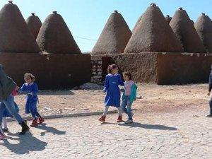 Araplar Türkiye'de gıda yetiştirecek