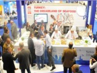 Avrupa sofralarında her 3 balıktan biri Türk balığı
