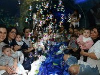 Emaar Akvaryum'danBebeklerel 'Sualtı Duyu Gelişimi'
