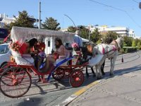 Hayvanseverler Antalya'da fayton yasaklanmasına sevindi