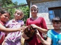 Alanya'da75 yıllık tavuk yasağı torun sevgisiyle delindi