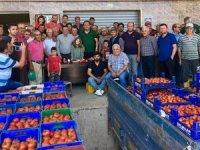Çiftçi 2 liraya ürettiği domatesi 1,2 kuruşa satıyor