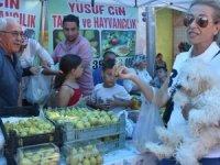 Torbalı Bardacık İnciri Festivali'nde üretici bayramı